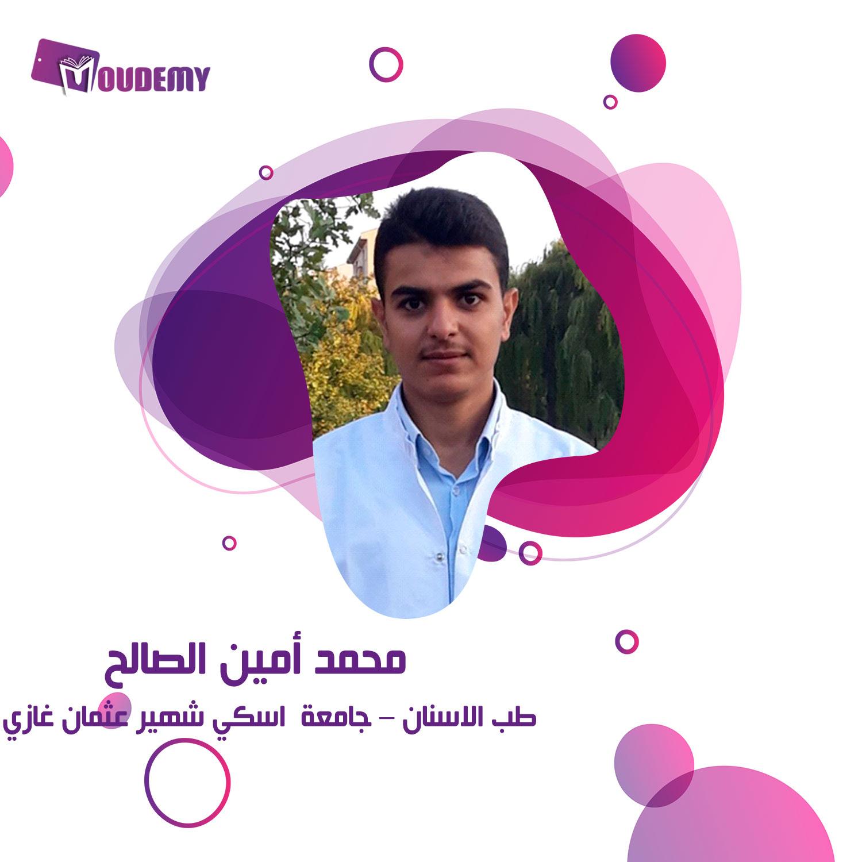 محمد أمين الصالح