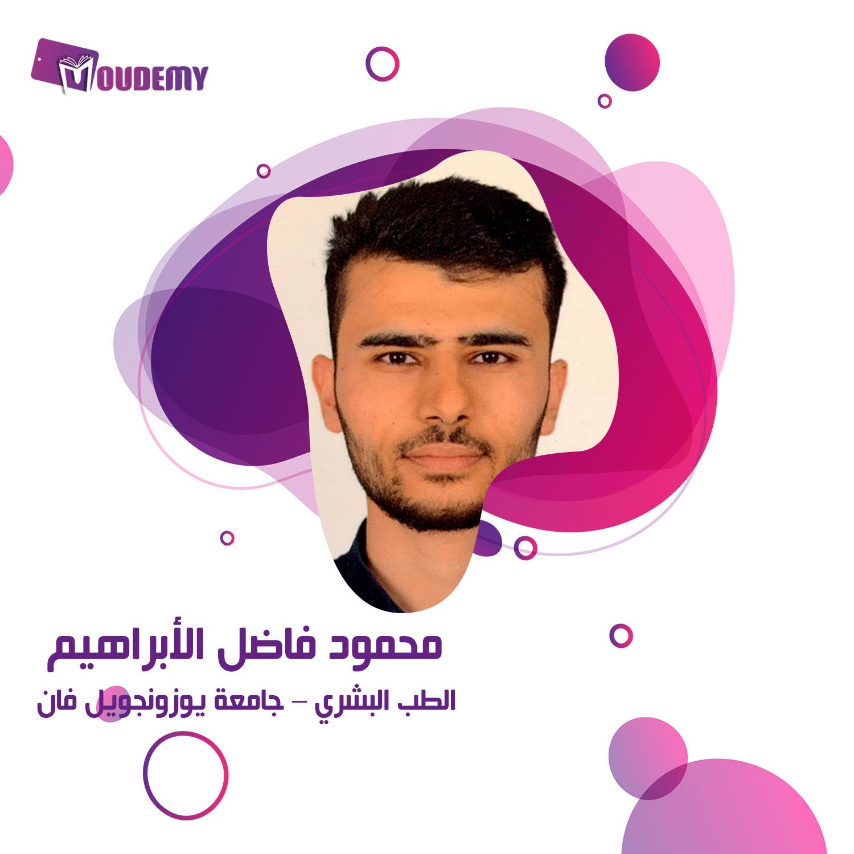 محمود فاضل الابراهيم